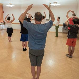 Schnuppertraining Zhineng Qigong @ Hamza´s Punch the Beat Academy | Rum | Tirol | Österreich