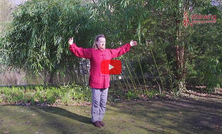 Video Zurück zur Natur