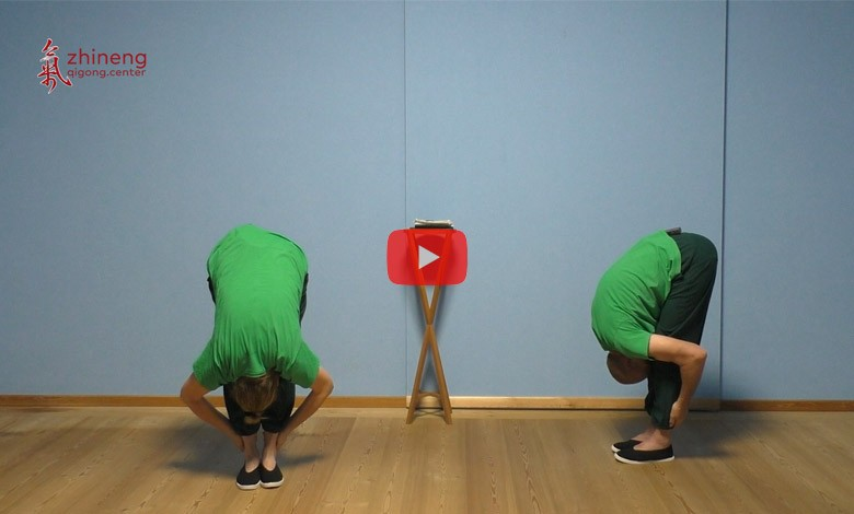Video Zubehör fürs Räuchern